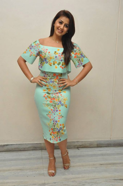 Nikki galrani light green color dress photos stills