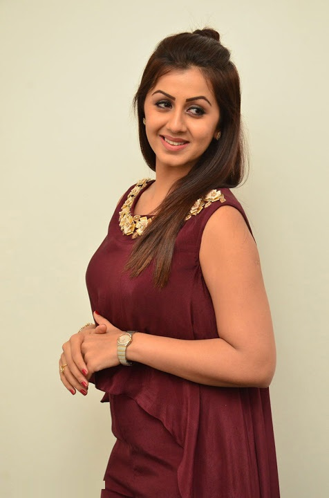 Nikki galrani purple color dress heroine pics