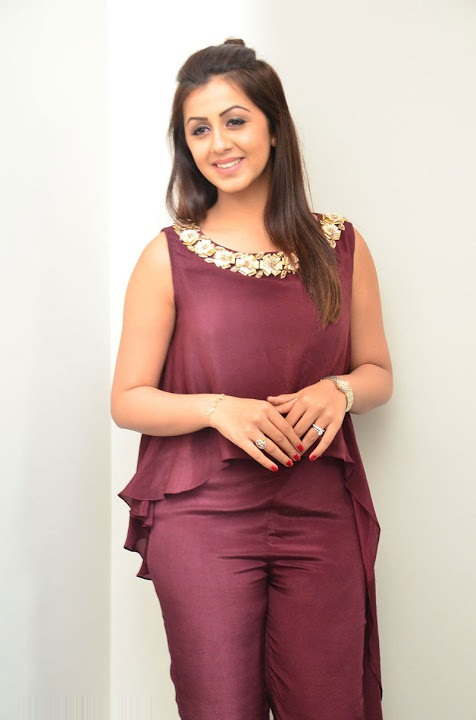 Nikki galrani purple color dress movie promotion slide show