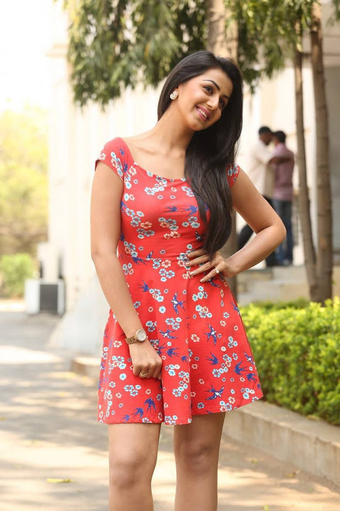 Nikki galrani red dress hot computer pictures