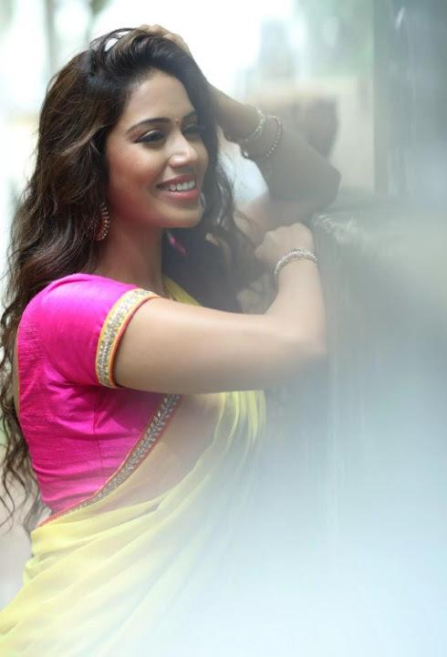 Nivetha pethuraj half saree pictures