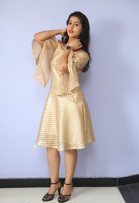 Pavani reddy gold color dress figure image