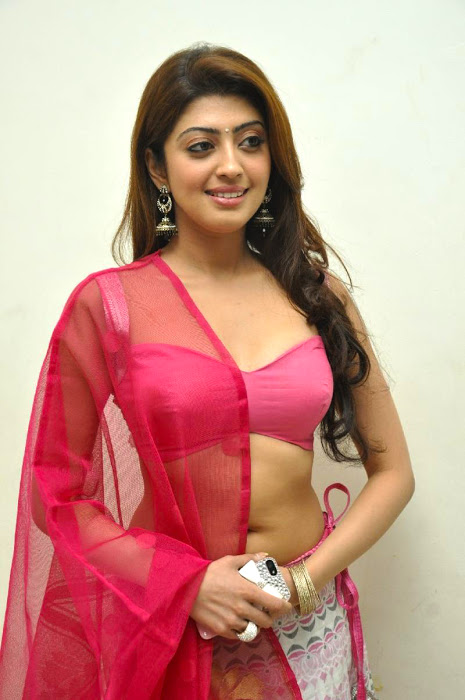 Pranitha figure smile pose photos