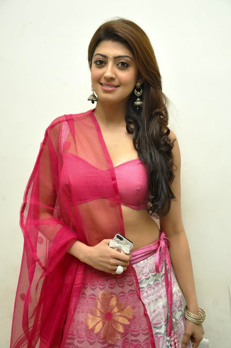 Pranitha subhash half saree beautiful pictures