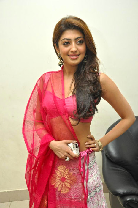 Pranitha subhash half saree hd stills
