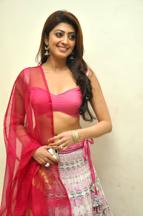 Pranitha subhash half saree photos